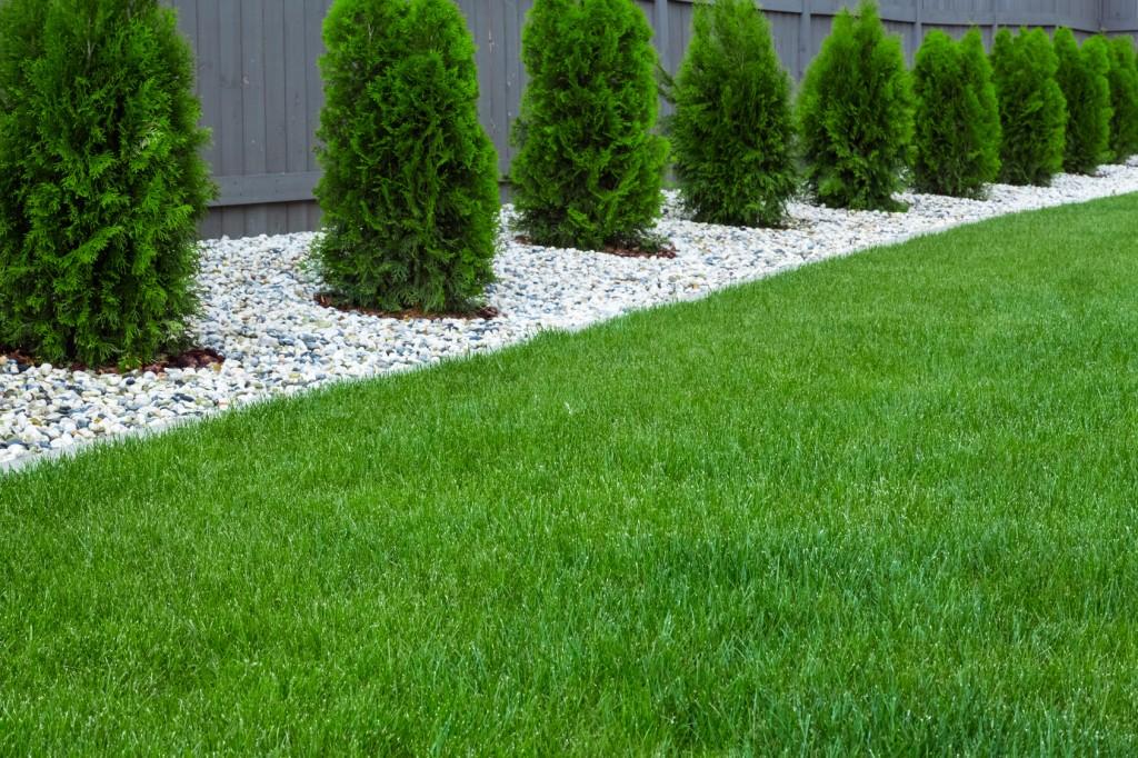 40mm Birkdale Artificial Grass Sb Building Supplies Ltd